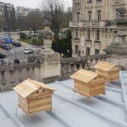 miel-fabrique-a-paris-apis-civi-5