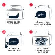 notice-boite-a-champignons