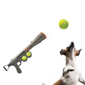 canon-a-balles-pour-chien-4